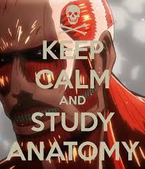 Anatomy written 1st prof (July, 2014) suggestion