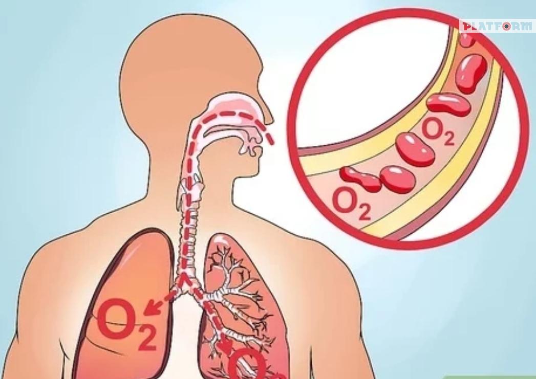 কোভিড-১৯ এবং রক্তে অক্সিজেনের ঘনমাত্রা যাচাইয়ের বিকল্প পদ্ধতি